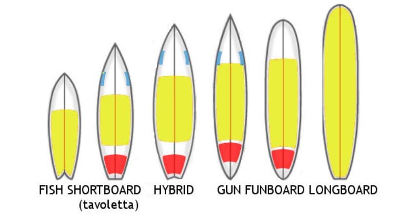 Come scegliere una tavola da Surf?